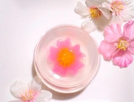 食べられるお花 フラワーゼリーを作ろう!