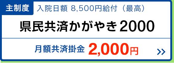 共済 神奈川 県民